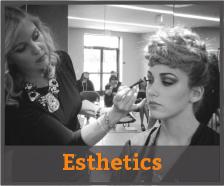 esthetics-program